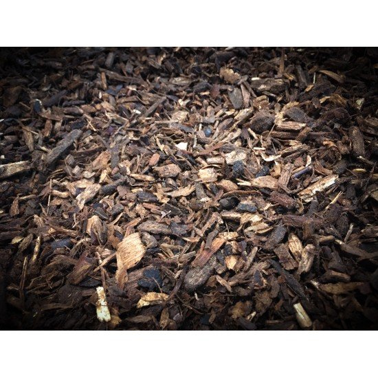Rotten white wood chips