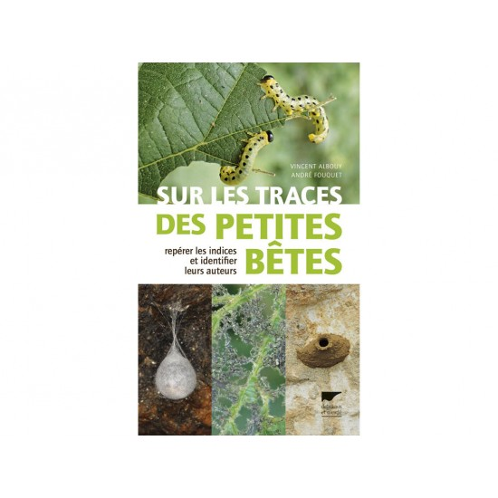 copy of Les insectes...