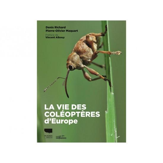 La vie des coléoptères...