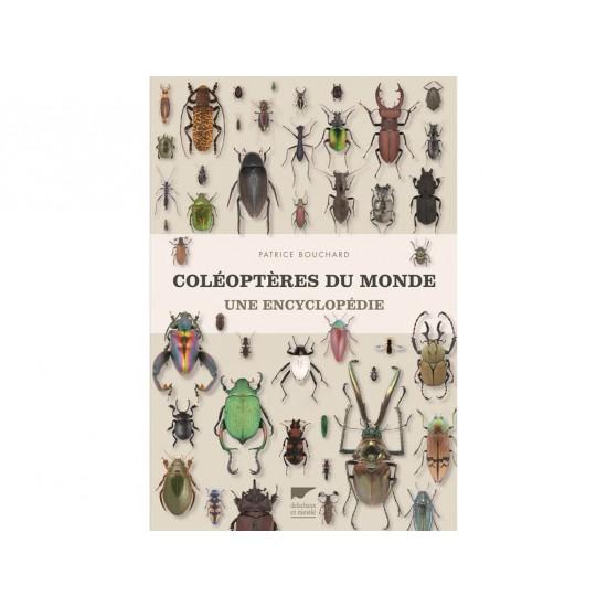 Coléoptères du monde