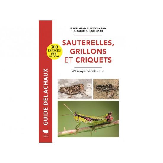 Sauterelles, grillons et...